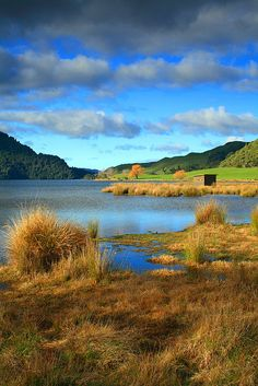 Lake Okareka, NZ. Visitied my friend Candee in April, 2013.  The outbuilding in the distance is a great place to bird watch. I saw Canadian geese, Pukeko's, Black Swans and a multitude of other birds. Dusk is the best time of day. It was so beautiful. This is where Candee takes her daily walk. What a life!
