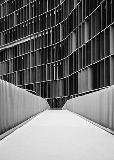 D*HAUS foto zwart wit gevel lamellen verticaal oprit textuur diepte