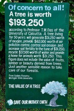 Of Concern To All! A tree is worth $193,250