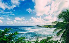 Maui - Hawaii