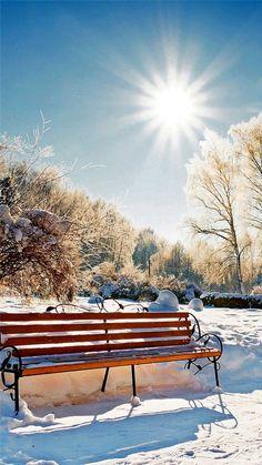 Winter Snowy Sunshine Bright Bench Park Nature Dandelion Sunlight Field #iPhone #6 #plus #wallpaper