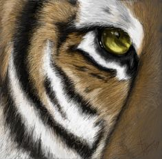 """Eye of the Tiger  In Honor & Loving Memory of Bryan David Byrge, His """"Live Big"""" Example, and His Eye of the Tiger approach to EVERYTHING!   We love you Big B! RIP!"""