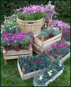 simple cottage garden ideas for front yard inspiration page 24 Wildflower Garden, Diy Garden, Plants, Cottage Garden, Garden Types, Backyard Garden, Front Yard, Container Gardening, Container Gardening Flowers