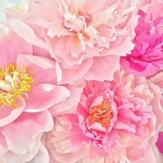 Aren't these pink #peonies stunning? Thanks to Agnes, aka @flowerfilledlife, for sharing these handmade paper #flowers with us. She dedicates them to the moms of the world who bring beauty into our lives. How are you celebrating the women in your life this month? Show us using #ImSoMartha.