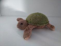 schildpadje kristel droog