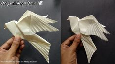 In this video, I'm going to make an origami Angel Dove 🕊. It is modification of traditional origami Dove. It has four wings, two wings of dove 🕊 and other tw. Diy Origami, Origami Ball, Design Origami, Origami Star Box, Origami Fish, Origami Butterfly, Paper Crafts Origami, Origami Stars, Origami Flowers