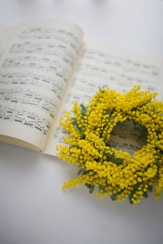 Mimosa Wreath: A pretty pop of yellow to mix up the holiday palette!