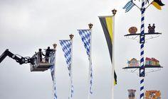 I preparativi per l'Oktoberfest a #Monaco di Baviera: si comincia il 20 settembre.