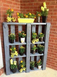 Maak een prachtige tuin met weinig geldpaletten opnieuw gebruik k ... - #een #Gebruik #geldpaletten #Maak #met #opnieuw #Prachtige #tuin #weinig