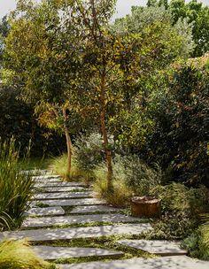 We visit Landscape Designer Frances Hale of Peachy Green in her divine new workspace in Fairfield. Australian Garden Design, Australian Native Garden, Contemporary Garden Design, Modern Design, Landscape Design Melbourne, Garden Landscape Design, Green Landscape, Menorca, Back Gardens