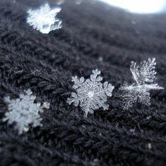 Snowflakes; God's fingerprints. Proof He's here. I love them.