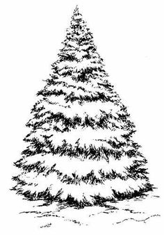 Large Snowy Fir Tree New Wood Mounted Rubber Stamp Christmas Card Stamping £11.99