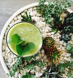 Immune boosting green power smoothie! #health #superfood #cleaneating