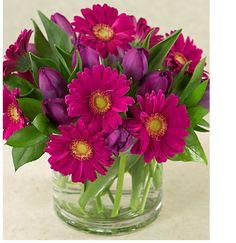 Gerberas in clear glass vase Easter Flowers, Mothers Day Flowers, Flowers For You, Fresh Flowers, Pink Flowers, Purple Tulips, Gerbera Daisies, Ikebana, Beautiful Flower Arrangements