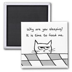 Angry Cat Wants You Out of Bed 2 Inch Square Magnet