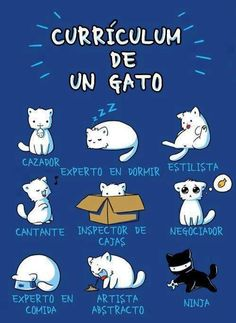 Be cat, my friend