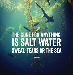 sweat-tears-sea