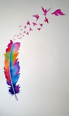 colorful feather birds