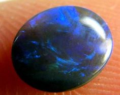 BLACK OPAL IDEAL RING STONE GREEN HUES . .30 CTS QO 2356, black opal, lightning ridge black opal, Australian opal