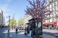 Kiosque Lulu dans ma Rue, rue Saint Paul à Paris