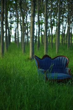 A comfortable chair in a field surrounded by trees, blue skies, no noise except the birds singing, and no one knows I'm there. Sweet serenity and tranquility. Yes please...