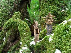 #流木 #流木アート #山水画 #金澤尚 #屋久島アート  「流木の魂 森に帰る」 driftwood art object #18-2010-11 我が家の屋根裏に十年以上幽閉されていたが、ヤット山に連れて行ってもらった二人 初めての記念撮影は、ナント嬉しそうなんだろうか!  一人はとても不安そうだが、、、 帰ったら又屋根裏暮らしが待っている 。  今日は内緒にしておこう。