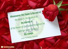 Whosesoever this flower is the seal of,  the stamp of, the signature of,  the impress of,  all the flowers of that species throughout the  earth are surely His seals,  His stamps.  (Risale-i Nur Collection - The Words)    www.questionsonislam.com