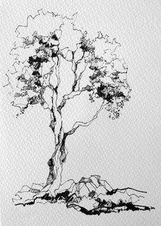 Landscape Sketch, Landscape Drawings, Landscape Art, Tree Sketches, Drawing Sketches, Art Drawings, Sketching, Nature Drawing, Realistic Drawings