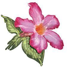 """Képtalálat a következőre: """"rózsa festése"""""""