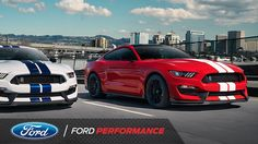 These Cars Are Meant to be Driven   Mustang   Ford Performance