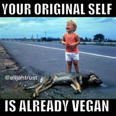 Oh. little one... I feel so much for you. #vegan #compassion