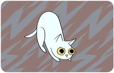 15 schockierende Wahrheiten, was das Verhalten deiner Katze wirklich bedeutet. Du wirst sie nie wieder mit denselben Augen sehen!