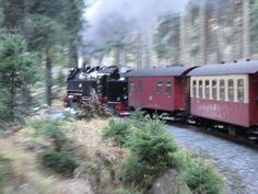 Auch mit Kindern kann der Brocken im Harz ein tolles Erlebnis werden. Fühlt euch wie Harry Potter. Aber Achtung, es herrscht Hai-Alarm, Abenteuer garantiert