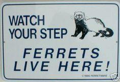Ferret Sign =)