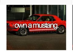 My Own Mustang