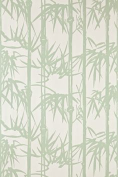 Product: BP2139-Bamboo