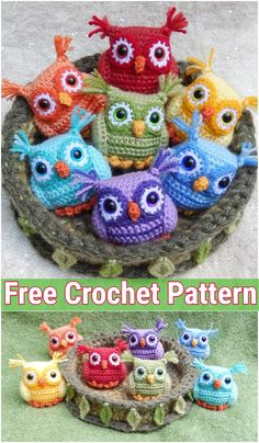 I decided to show you some of the cute and cool crochet owl patterns for your babies and kids that you can knit as stuffed toys with your crocheting hooks. Crochet Amigurumi Free Patterns, Afghan Crochet Patterns, Free Crochet, Crocheting Patterns, Crochet Eyes, Bead Crochet, Crotchet, Crochet Hooks, Crochet Owl Basket