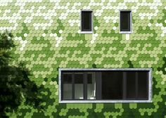 Single Family House / Brandt + Simon Architekten