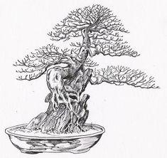 Bonsai Sekijoju - Na kameni (na skále)