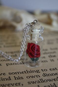 Beauty and the Beast Necklace Rose in a Vial by spacepearls