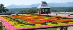 There are nine gardens at Biltmore House and Gardens, each one designed and planned by Frederick Law Olmsted