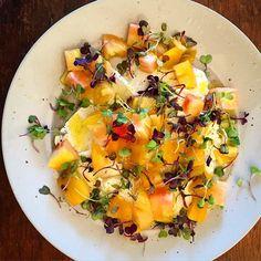 Grass-fed Buffalo Mozzarella + Tomatoes + Olive Oil  by thisiskaychun #Salad #Tomatoes #Mozzarella