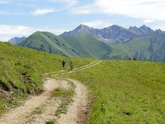 Lechtal - Rotlechtal Raaz Alpe