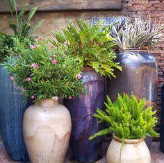 10 Container Gardening Ideas, 500x499 in 104.9KB