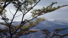 The Fitz Roy Trekking  Patagonia Argentina