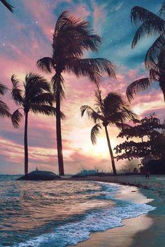 beach photography beach pictures beach outfit beach wedding beach quotes beach h. Ocean Wallpaper, Summer Wallpaper, Nature Wallpaper, Tree Wallpaper, Wallpaper Praia, Couple Wallpaper, Wallpaper Wallpapers, Wallpapers Android, Wallpaper Quotes