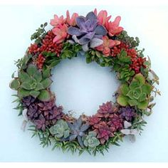 Succulent wreath....lovely