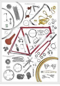 David Sparshott - Anatomy of bike #poster #bicycle #illustration