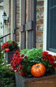 cute idea for Fall window boxes