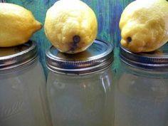 Crock-Pot Ladies Crock-Pot Lemonade Moonshine –